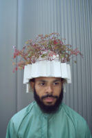 headgardens geranium robertianum turned Dick_