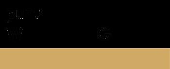 logo-puntwg1