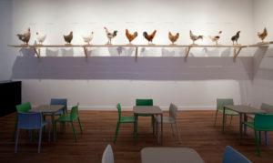 Koen van Mechelen The Cosmopolitan Chickenproject Het Domein 2015
