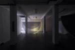 Echolocation-NocturnePhotoValeriaMachesini-2