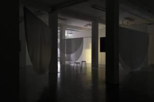 Echolocation-NocturnePhotoValeriaMarchesini